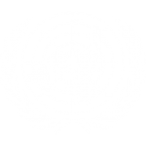 un-logo-transparent